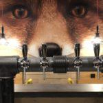 Brasserie le FOX - Sélestat